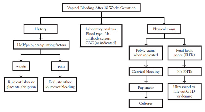 Normal for bleeding to stop 24 hours after a D&C? Paper work says abortion and missed abortion.?